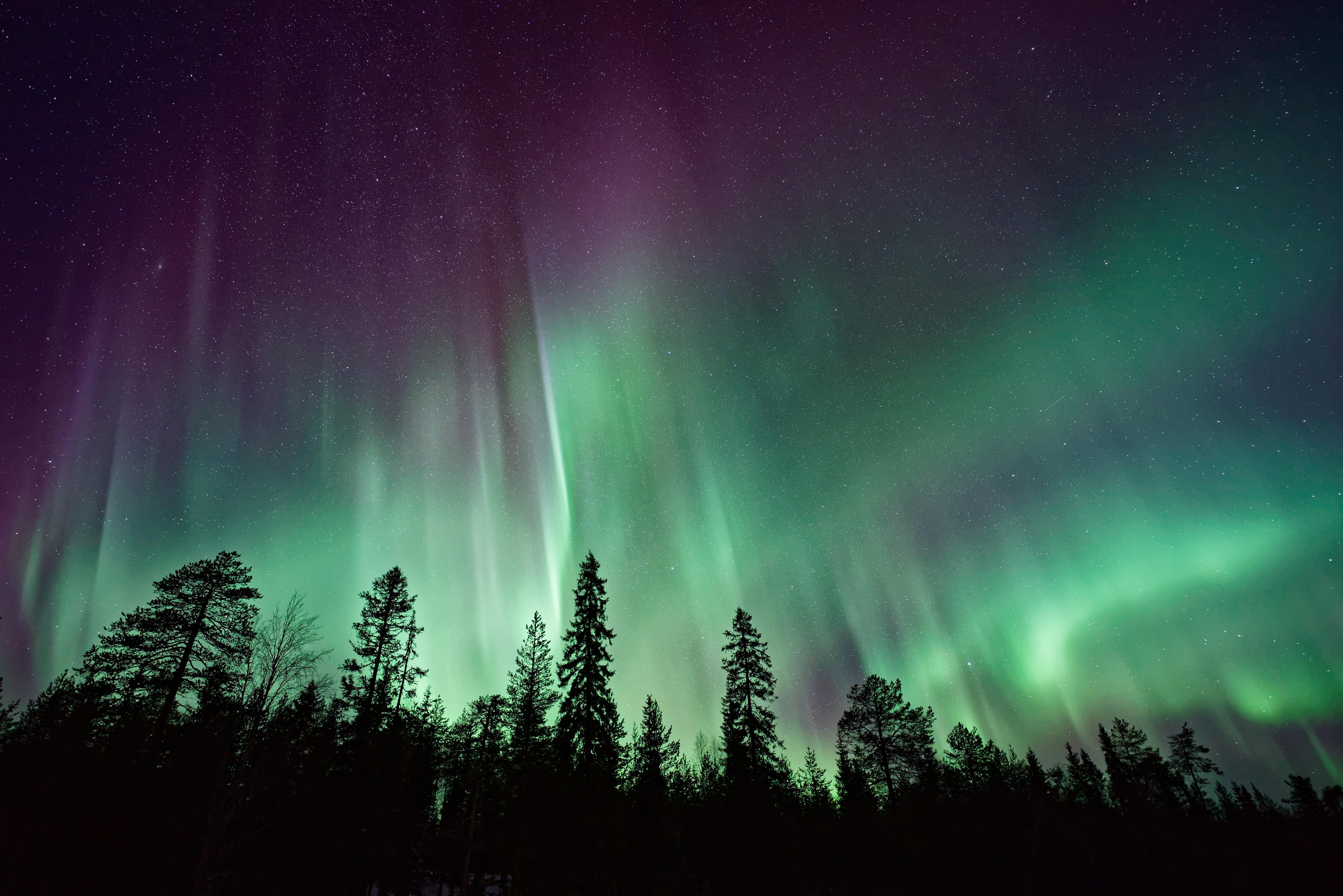 Vakantie Noorwegen - Noorderlicht