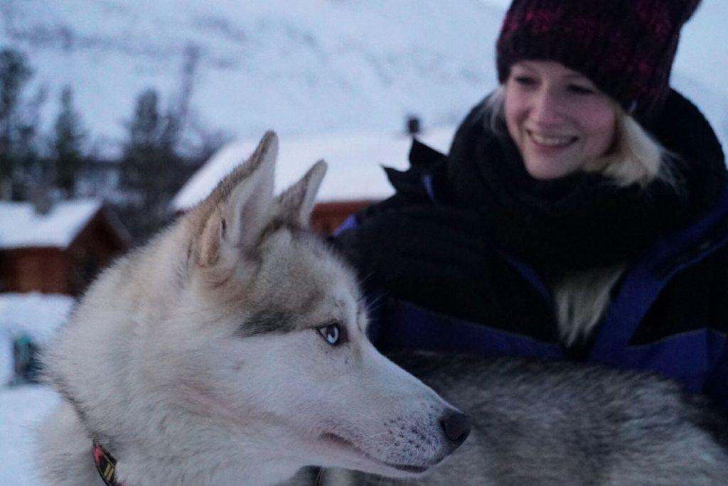 Met de huskies van Lyngsfjord Adventure