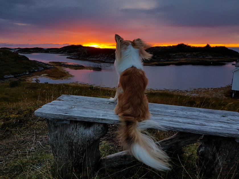 Vakantie Noorwegen - zonsondergang op Smola