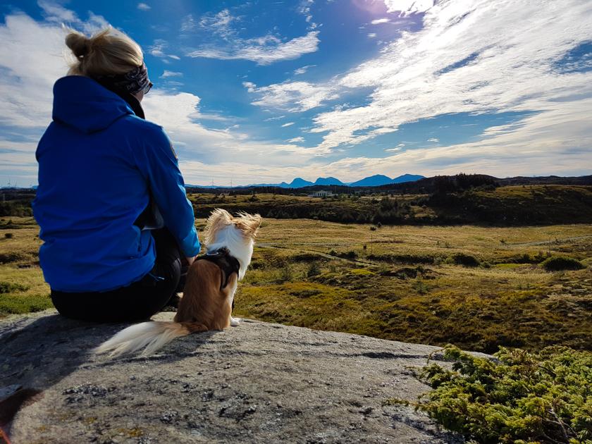 Vakantie Noorwegen - op een berg in Noorwegen
