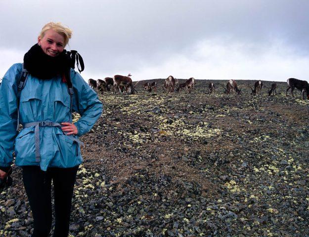 Vakantie Noorwegen - rendieren op Besseggen
