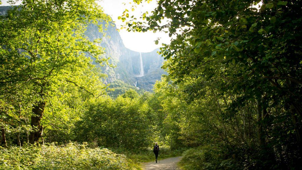 Tussen de bebossing wandelen naar Mardalfossen