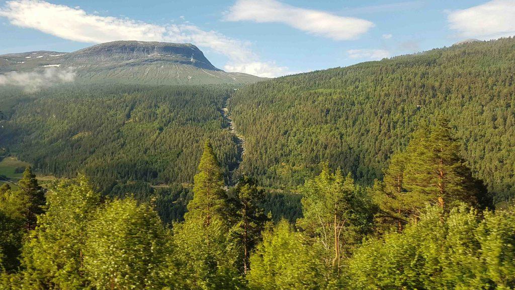 Prachtige vergezichten vanuit de Raumabanen trein