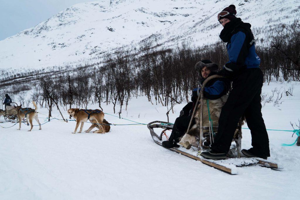 Hondensledetocht maken door Signaldalen, nabij Tromsø