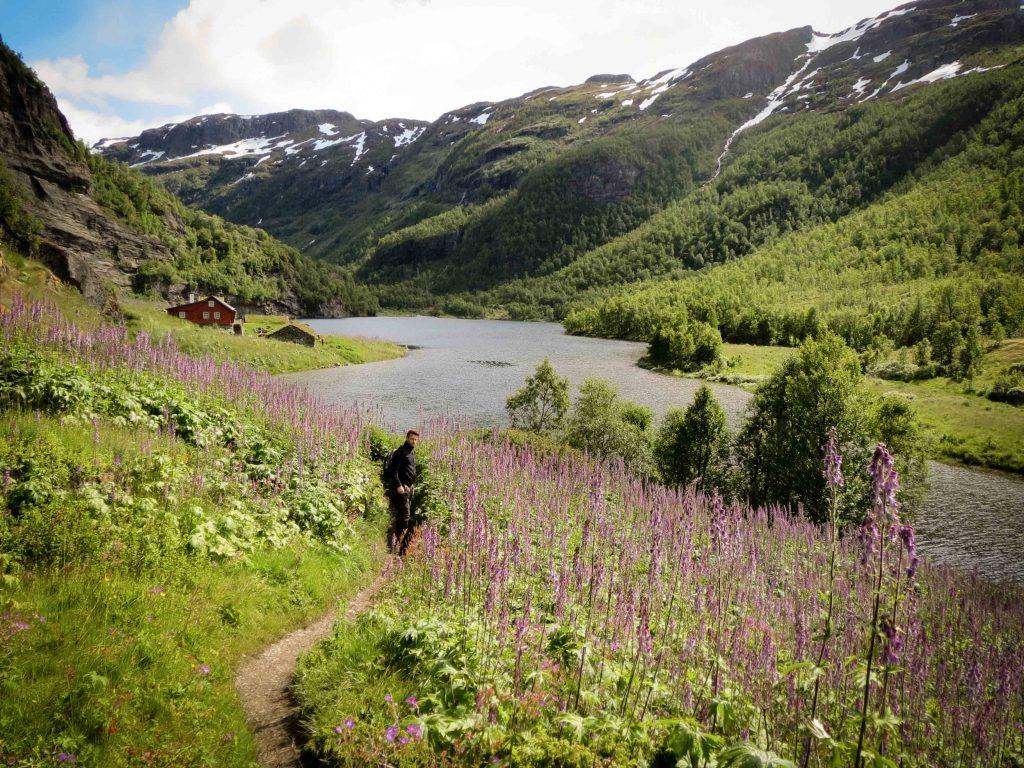 Man poseert bij bloemenvelden in Aurlandsdalen