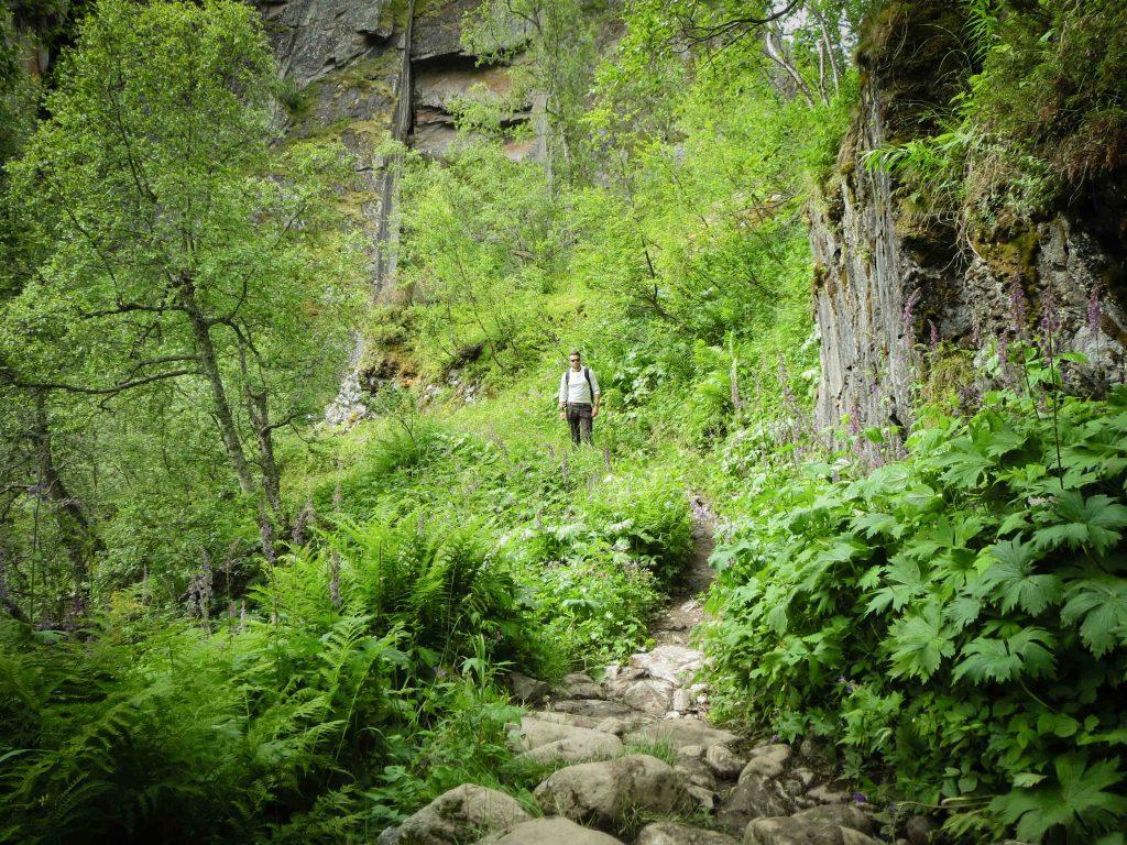 Man poseert tussen begroeiing in Aurlandsdalen
