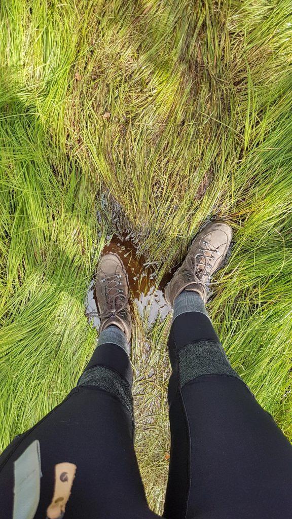 Wandelschoenen in het drassige gras